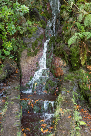 laurel mountain: Last waterfall of the Twenty-five Fountains Levada hiking trail, Madeira Portugal