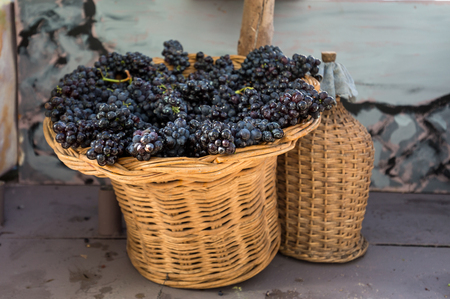 bunches of red grapes in a wicker basket and carboy
