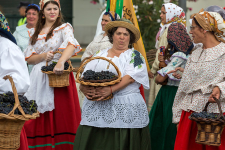 FUNCHAL, MADEIRA, PORTUGAL - SEPTEMBER 4, 2016: the women carry the basket of grapes in traditional costume. Madeira Wine Festival - Historical and Ethnographic parade in Funchal on Madeira. Portugal Editorial