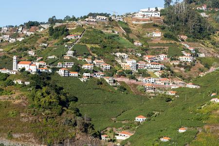 Widok na winnice firmy winiarskiej Madeira, Estreito de Camara de Lobos, Madera, Portugalia Zdjęcie Seryjne