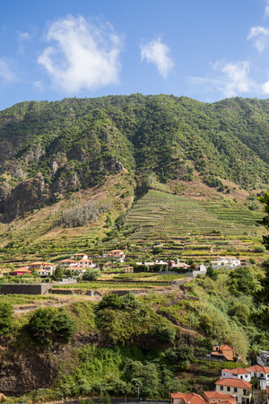 terraced field:  Village and Terrace cultivation in the surroundings of Sao Vicente. North coast of Madeira Island, Portugal