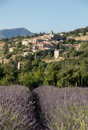 a lavender field with the village of Aurel beyond, the Vaucluse, Provence, France Stock Photo