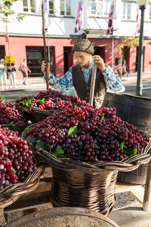 FUNCHAL, MADEIRA, PORTUGAL - SEPTEMBER 1, 2016: Sceneries related to the production of wine during the Wine Festival   in Funchal on Madera, Portugal