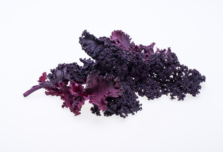 Freshly purple curly kale cabbage isolated on white background