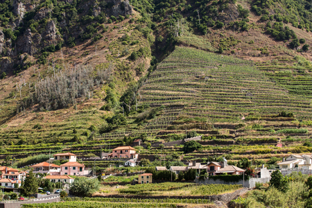 portugal agriculture: Village and Terrace cultivation in the surroundings of Sao Vicente. North coast of Madeira Island, Portugal