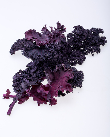 Freshly purple curly kale cabbage isolated on white background