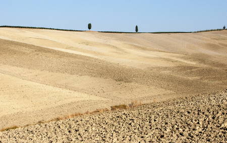 The rural landscape of the  Tuscany. Italy