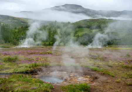View of a Meadow with Steaming Hot Springs, Haukadalur Valley, Southern Iceland