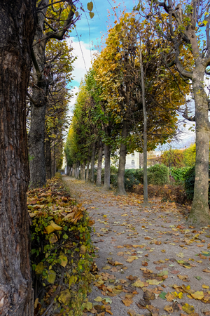 Paris, France - November 2017: Autumn in Paris. Garden at the Rodin Museum in Paris. France
