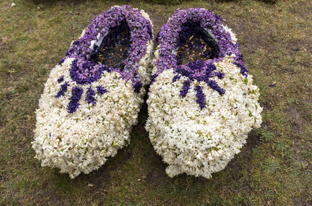 Noordwijkerhout, Netherlands - April 23,  2017: Traditional clogs made of hyacinths at the traditional flowers parade Bloemencorso from Noordwijk to Haarlem in the Netherlands Editöryel