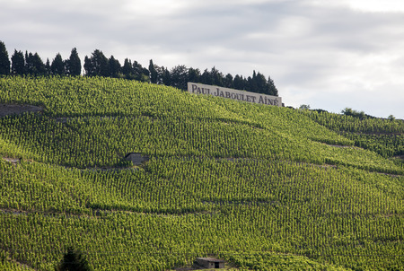 Tain l'Hermitage, France - June 28, 2017: View of the M. Chapoutier Crozes-Hermitage vineyards in Tain l'Hermitage, Rhone valley, France Éditoriale