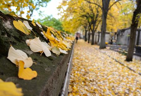 Cementerio de Pere Lachaise en París, Francia