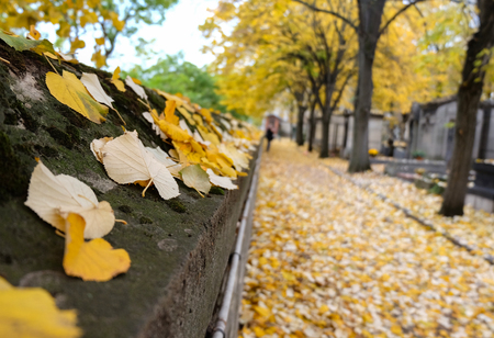 Pere Lachaise cemetery in Paris, France 免版税图像