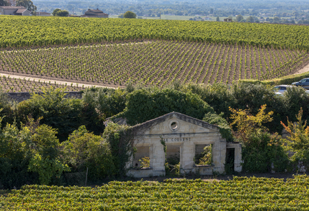 Famous French Vineyards at Saint Emilion town near Bordeaux, France. St Emilion is one of the principal red wine areas of Bordeaux and very popular tourist destination.