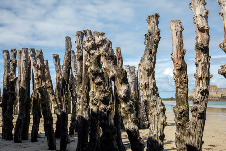 Big breakwater, 3000 trunks to defend the city from the tides, Plage de lÉventail beach in Saint-Malo, Ille-et-Vilaine, Brittany,