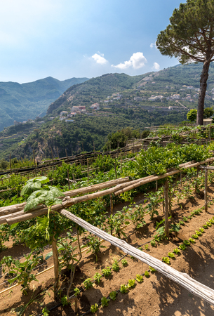 View from Ravello on the Amalfi Coast in Italy