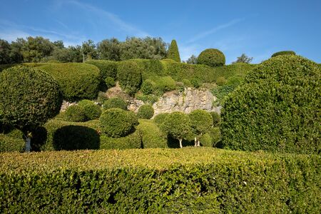 Topiary in the gardens of the Jardins de Marqueyssac in the Dordogne region of France