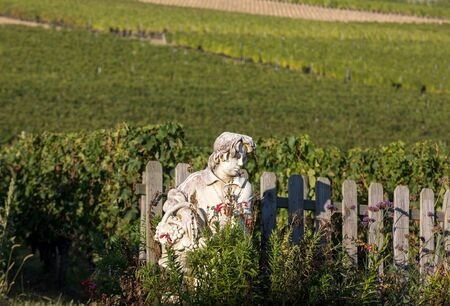 Saint Emilion, France - September 8, 2018: Statue of a boy holding a basket with grapes on the background of vineyards in the Saint Emilion region. France
