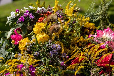 Floristic bouquet of flowers, herbs and fruits that are the symbol of summer Banco de Imagens