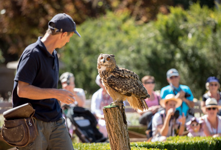 Milandes, France - September 4, 2018: Tourists are watching the show of birds of prey at Chateau des Milandes, a castle  in the Dordogne, Aquitaine, France