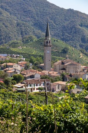 Picturesque hills with vineyards of the Prosecco sparkling wine region between Valdobbiadene and Conegliano; Italy. 版權商用圖片
