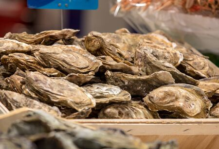 Fresh raw oysters on outdoor street market in Cancale town in Brittany, France