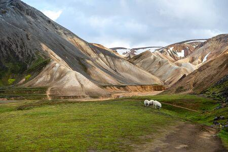 Volcanic mountains of Landmannalaugar in Fjallabak Nature Reserve. Iceland Stock Photo - 140545923