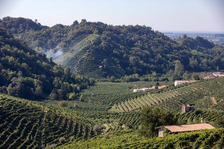 Picturesque hills with vineyards of the Prosecco sparkling wine region between Valdobbiadene and Conegliano; Italy. Foto de archivo