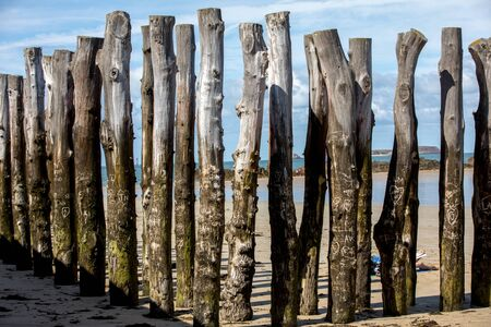 Big breakwater, 3000 trunks to defend the city from the tides, Plage de l'Éventail beach in Saint-Malo, Ille-et-Vilaine, Brittany, Standard-Bild