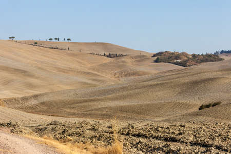 The rural landscape near Pienza in Tuscany. italy