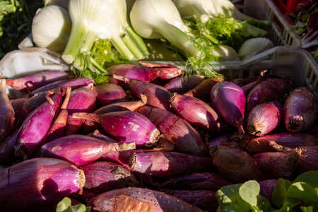 Red onions from Tropea (cipolla rossa di Tropea) at a farmers market in Italy
