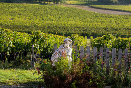 Statue of a boy holding a basket with grapes on the background of vineyards in the Saint Emilion region. France