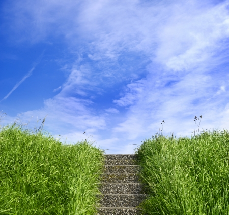 dike: Green grass on a dike with stairs