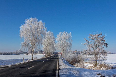 Hoarfrost on the road