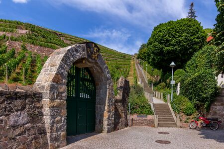 Radebeul at the stairs
