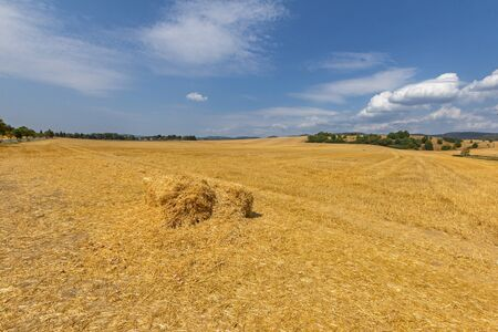 Haystack on the field Stock Photo