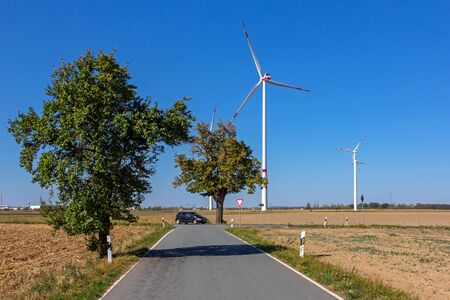 Trees and windmills