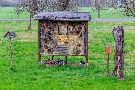 Insect house in the green