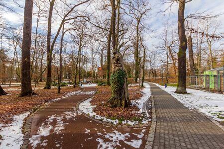 The path in the park Standard-Bild