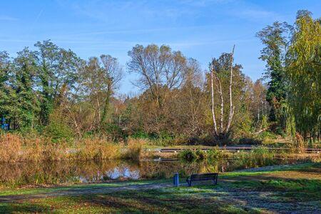 Duck pond in Bad Liebenwerda