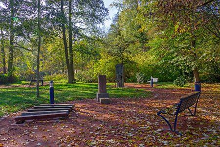 The park in autumn Standard-Bild