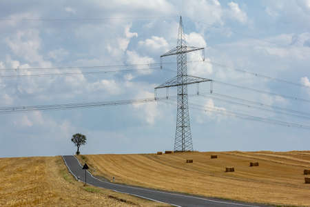 lonely tree on the road and a high voltage system Standard-Bild