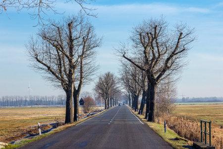 an avenue in Brandenburg