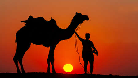 sunset with camel and rider