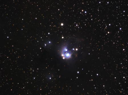Reflection Nebula in Cepheus NGC7129