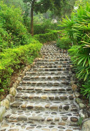 stone steps: Stone walkway winding in garden