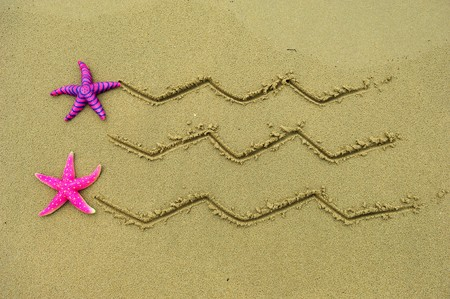 Sea frame with starfishes  photo