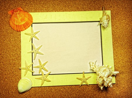 starfish and shells with frame on the beach, vacation memories  Stock Photo - 7648809