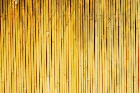 Light Golden bamboo Background great for any project. frame of bamboo-leaves background.  photo