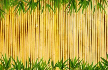 japones bambu: marco de bamb� deja fondo  Foto de archivo